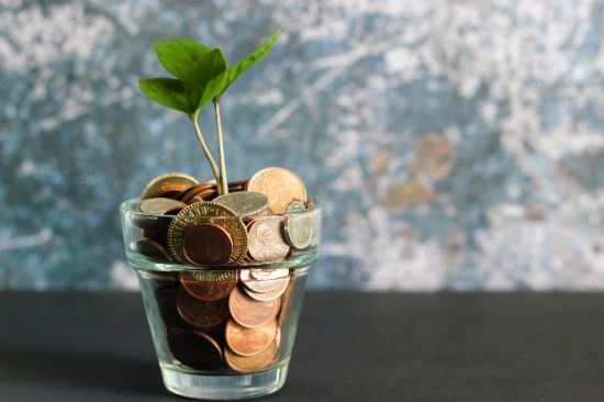 a tiny plant growing out of a glass filled with coins